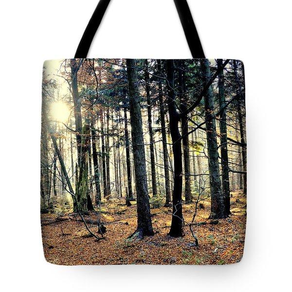 Fir Forest-3 Tote Bag