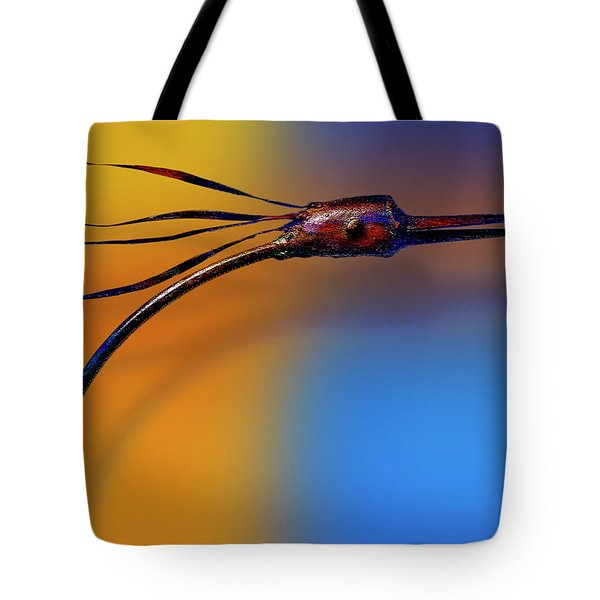 Tote Bag featuring the photograph Fire Bird by Paul Wear