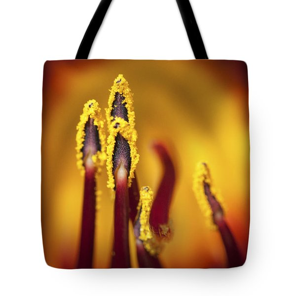 Fire Dancers Tote Bag