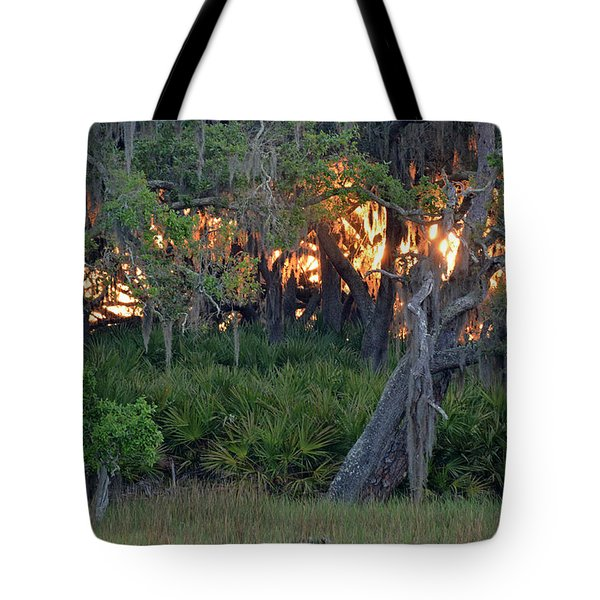 Tote Bag featuring the photograph Fire Light Jekyll Island 02 by Bruce Gourley