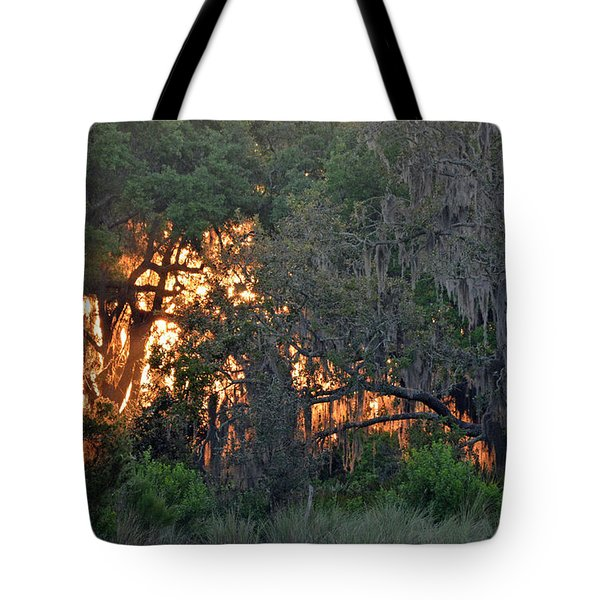 Tote Bag featuring the photograph Fire Light Jekyll Island 03 by Bruce Gourley