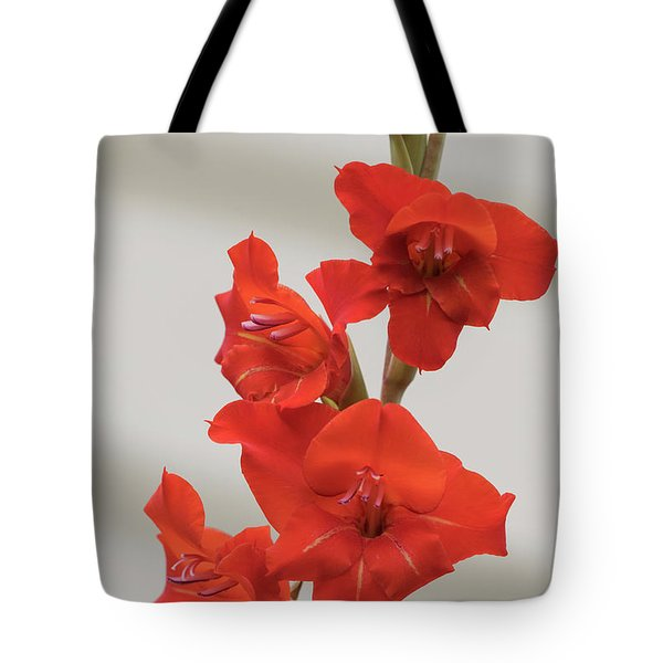 Tote Bag featuring the photograph Fire Red Gladiolas by Angie Vogel