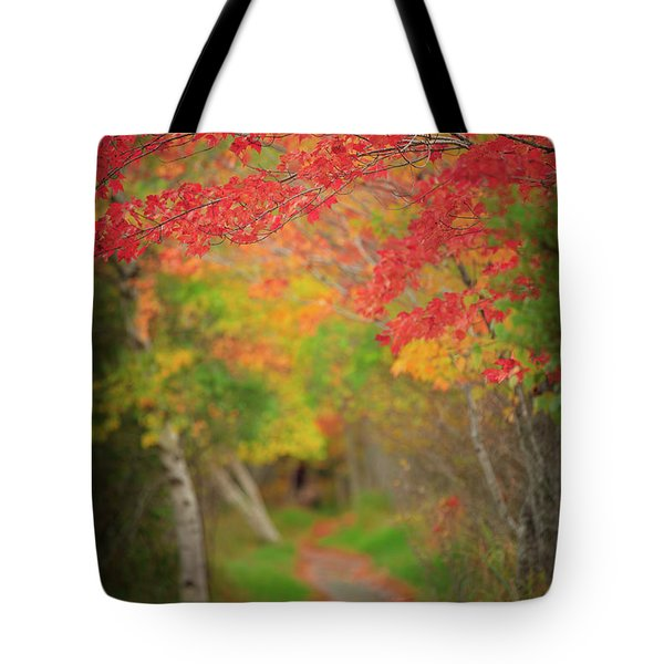 Tote Bag featuring the photograph Fire Red Path  by Emmanuel Panagiotakis