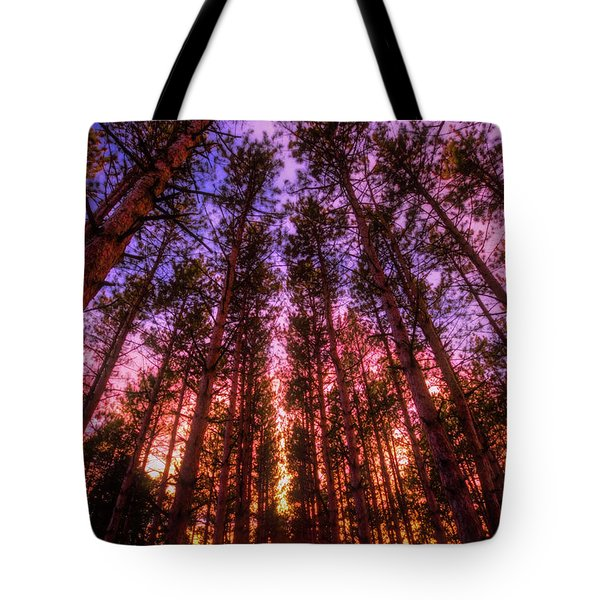 Fire Sky - Sunset At Retzer Nature Center - Waukesha Wisconsin Tote Bag by Jennifer Rondinelli Reilly - Fine Art Photography