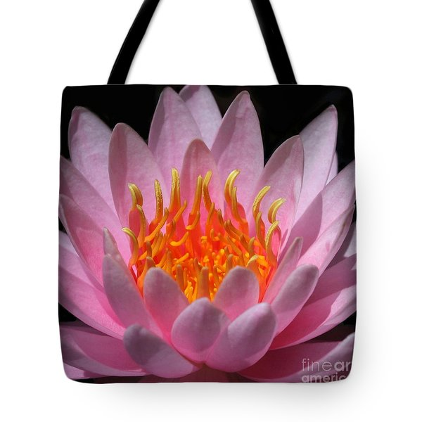 Fire Within Tote Bag by Sabrina L Ryan