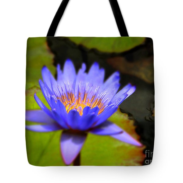 Fire Within Tote Bag by Sue Melvin
