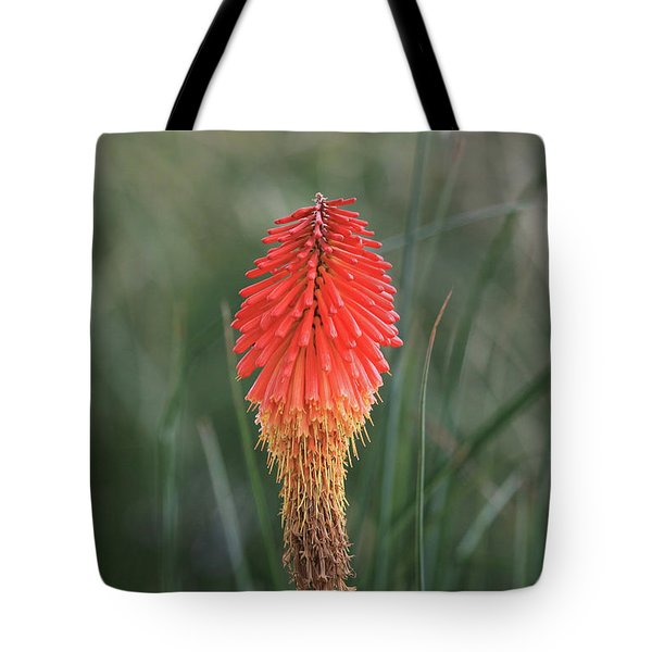 Tote Bag featuring the photograph Firecracker by David Chandler
