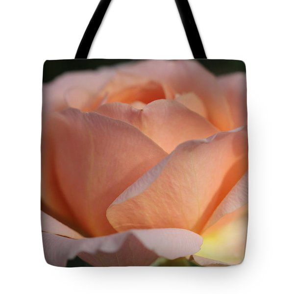 Fireside Tote Bag by Connie Handscomb