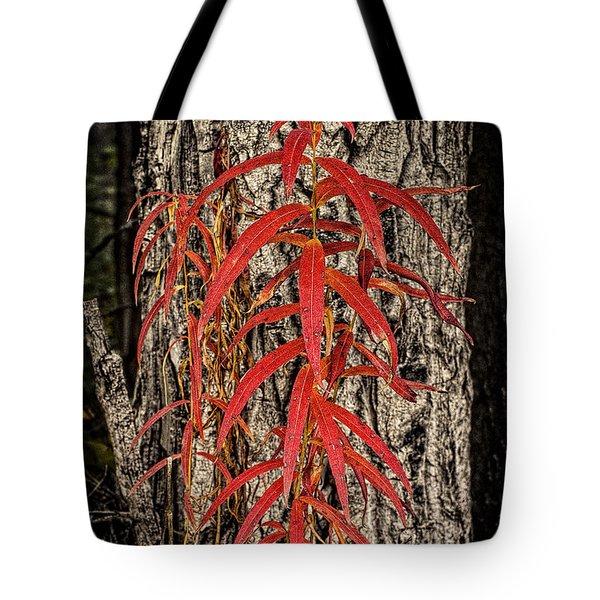 Fireweed 2015 Tote Bag