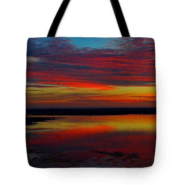 Fireworks From Nature Tote Bag by Dianne Cowen