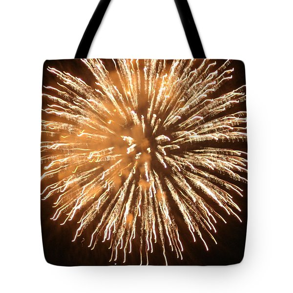 Fireworks In The Park 5 Tote Bag by Gary Baird