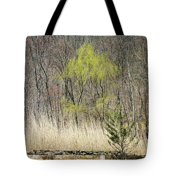 First Color - Tote Bag