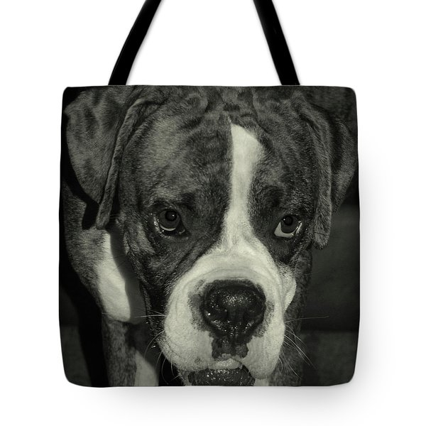 First Day Home Tote Bag by DigiArt Diaries by Vicky B Fuller