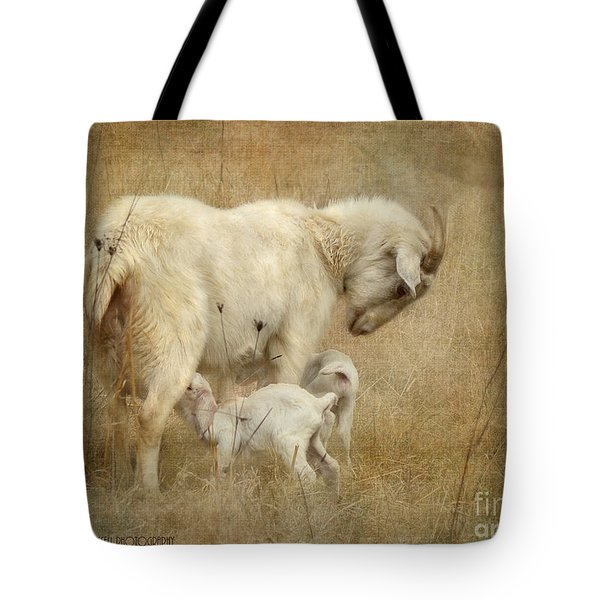 First Day Of Life Tote Bag by Kathy Russell