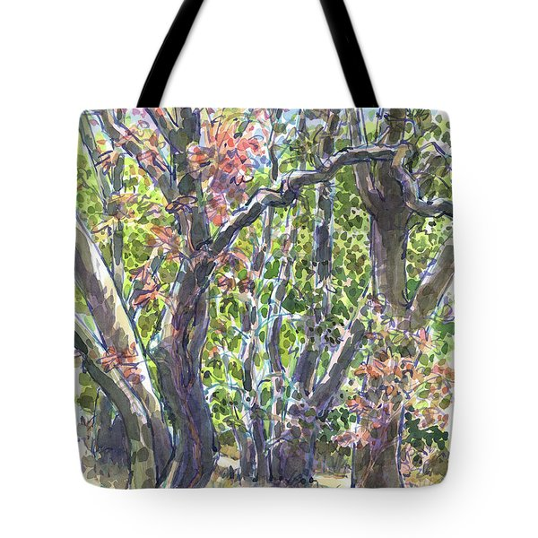 First Fall Colors In The Forest Tote Bag