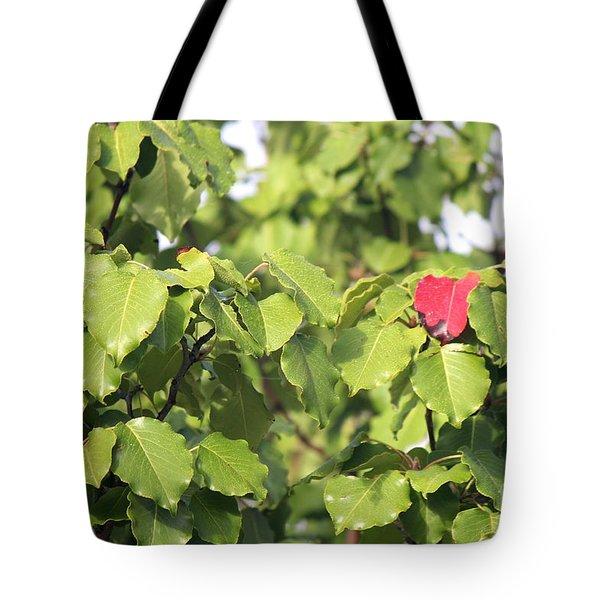 First Fall Leaf Tote Bag