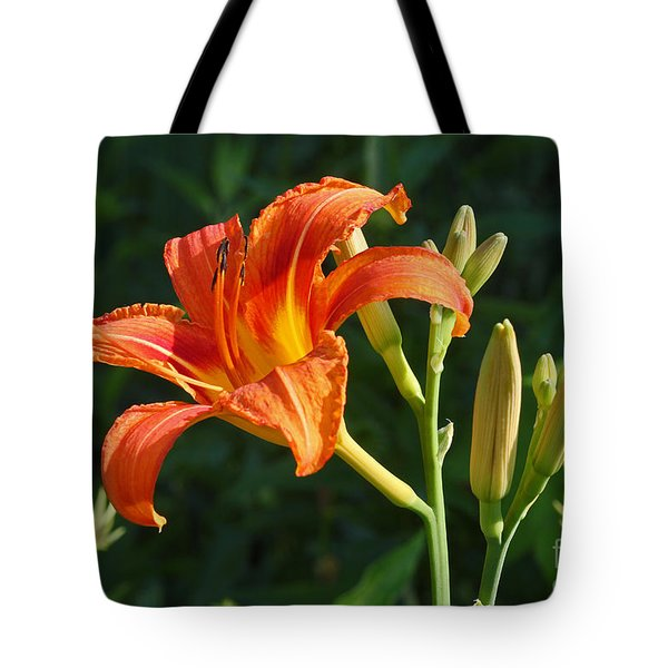 First Flower On This Lily Plant Tote Bag