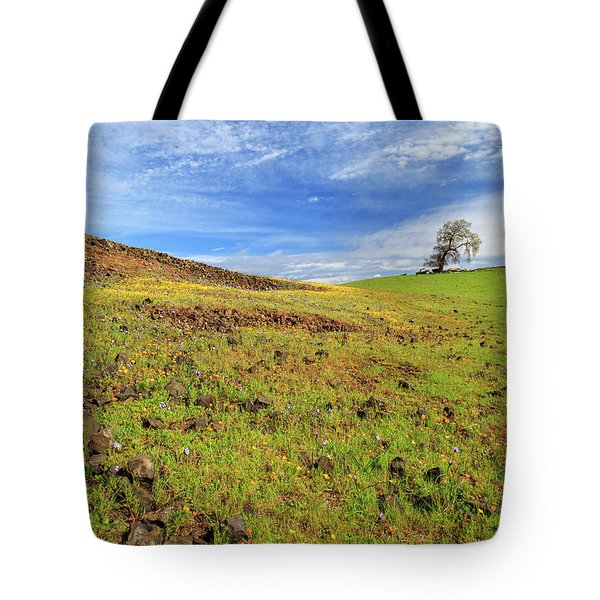 Tote Bag featuring the photograph First Flowers On North Table Mountain by James Eddy