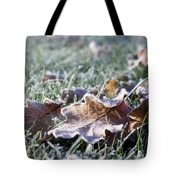 Tote Bag featuring the photograph First Frost by Helga Novelli