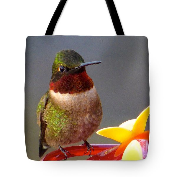 First Hummer Of 2015 Tote Bag