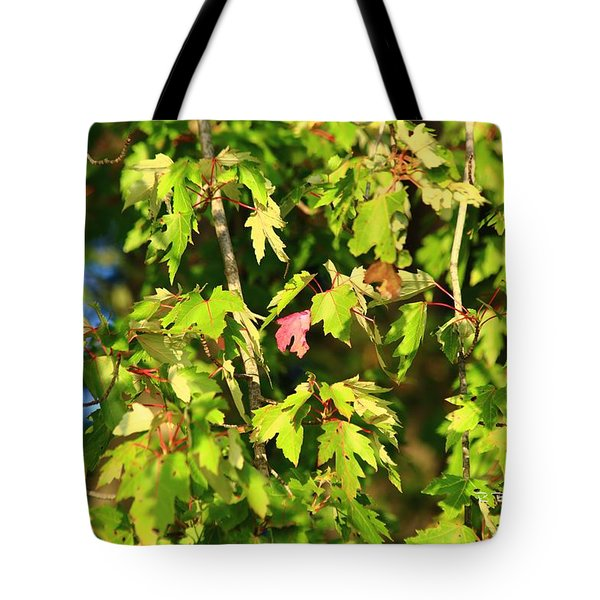 First Leaf Tote Bag