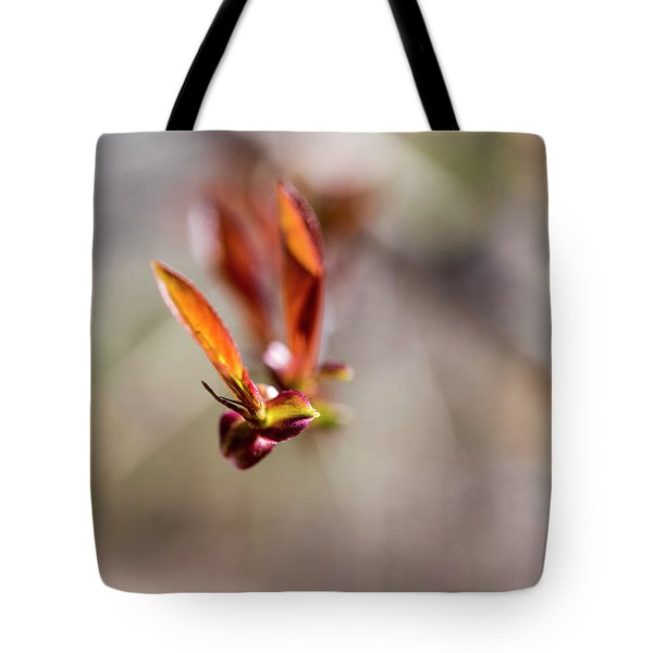 First Leaves Tote Bag