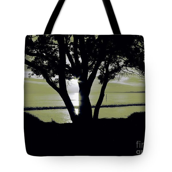 First Light - Plain Tote Bag by Karen Lewis