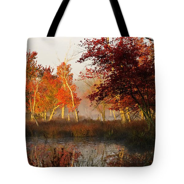 Tote Bag featuring the photograph First Light At The Pine Barrens by Louis Dallara