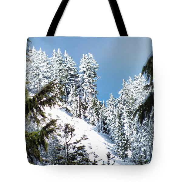 First November Snowfall Tote Bag