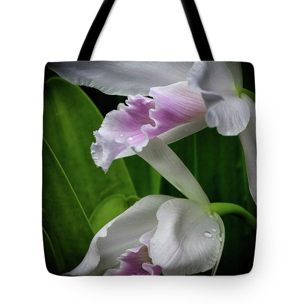 First Orchid At The Conservatory Of Flowers Tote Bag