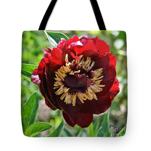 First Peony Bloom Tote Bag by Marsha Heiken
