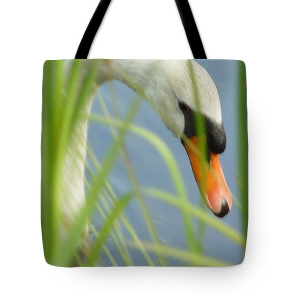 First Picture Tote Bag