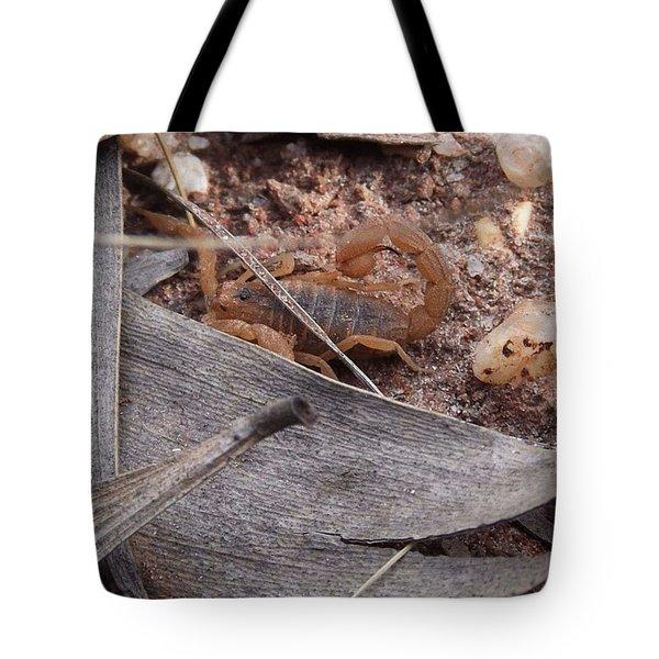 My First Wild Scorpion Tote Bag