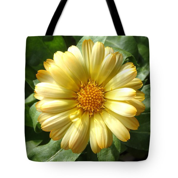 First Sign Of Summer Tote Bag