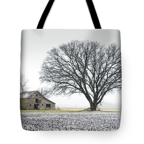 Winter's Approach Tote Bag