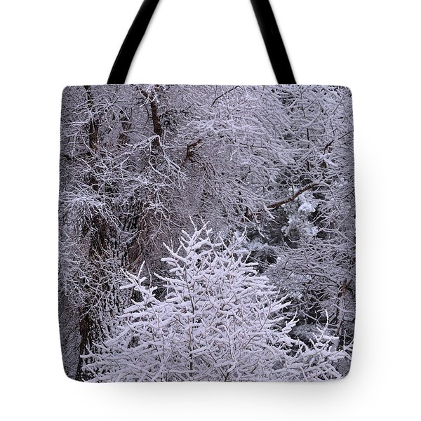 First Snow I Tote Bag