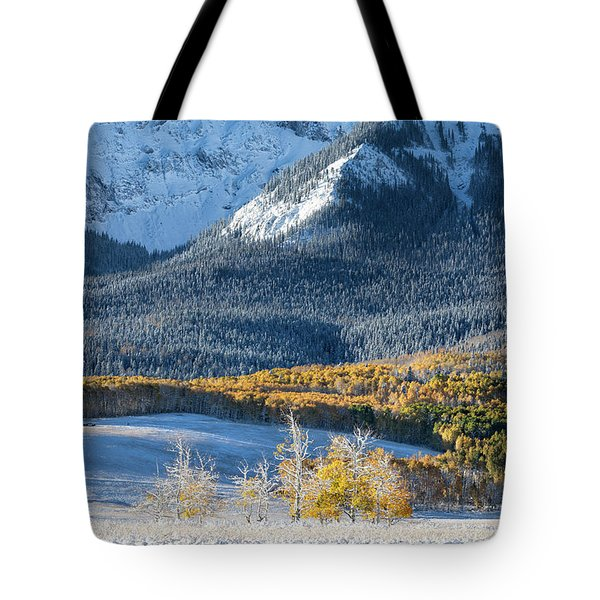 First Snow, Last Dollar Tote Bag