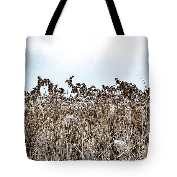First Snow On Roman Reed Tote Bag