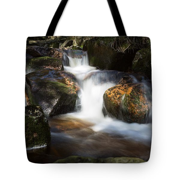 first spring sunlight on the Warme Bode, Harz Tote Bag