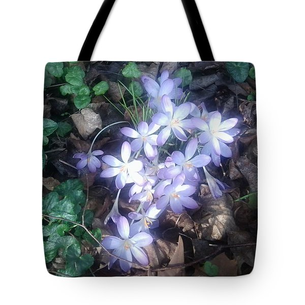 First Spring Treasures 2017 Tote Bag