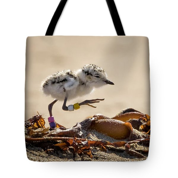 First Steps Tote Bag by Alice Cahill