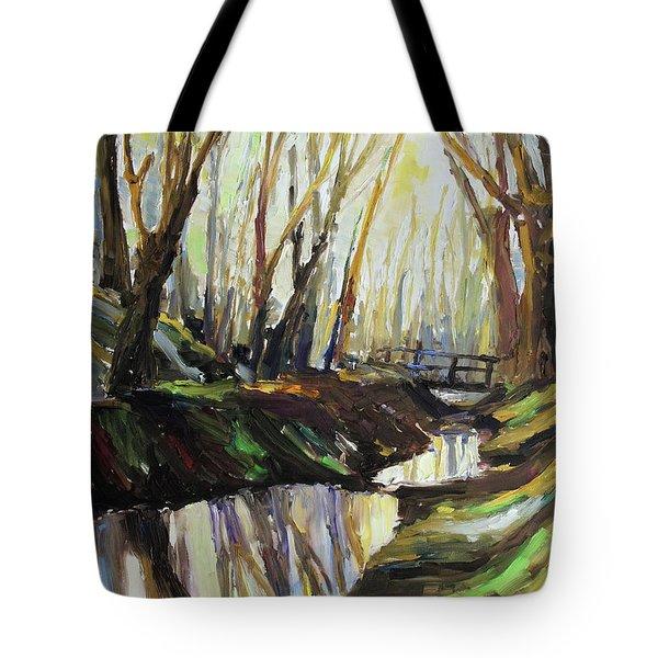First Sun Of Spring Tote Bag by Barbara Pommerenke