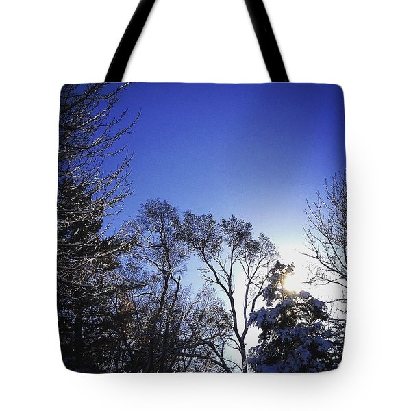 First Thaw After The First Snow Tote Bag