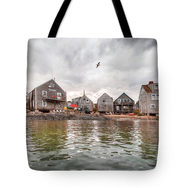 Fish Beach Tote Bag