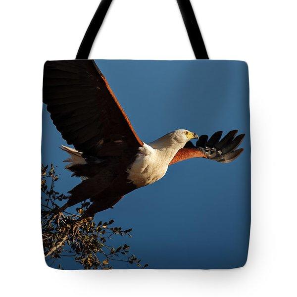 Fish Eagle Taking Flight Tote Bag