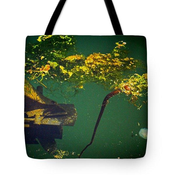 Fish Eye View Tote Bag by Dale Stillman