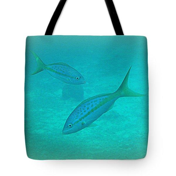 Fish Eye View  Tote Bag