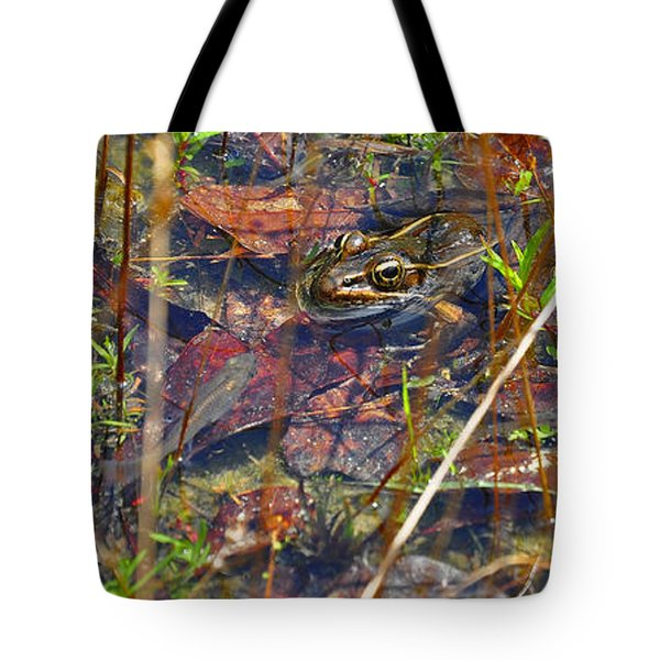 Tote Bag featuring the photograph Fish Faces Frog by Al Powell Photography USA