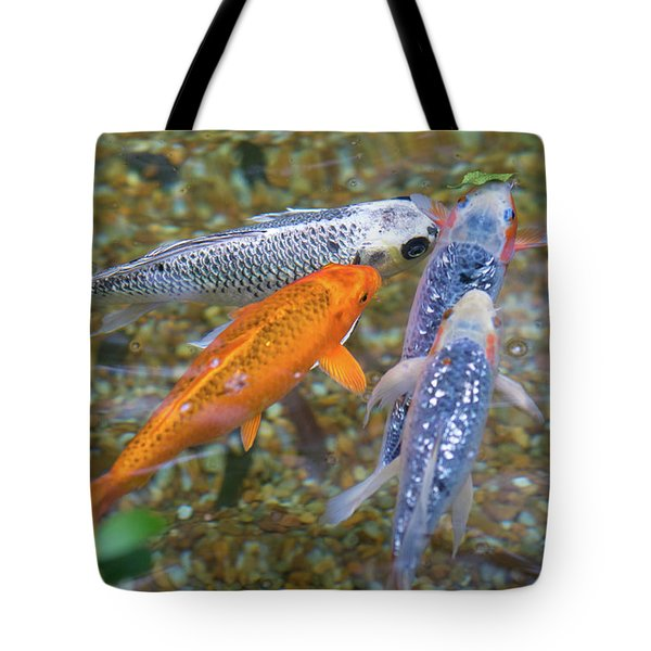 Fish Fighting For Food Tote Bag