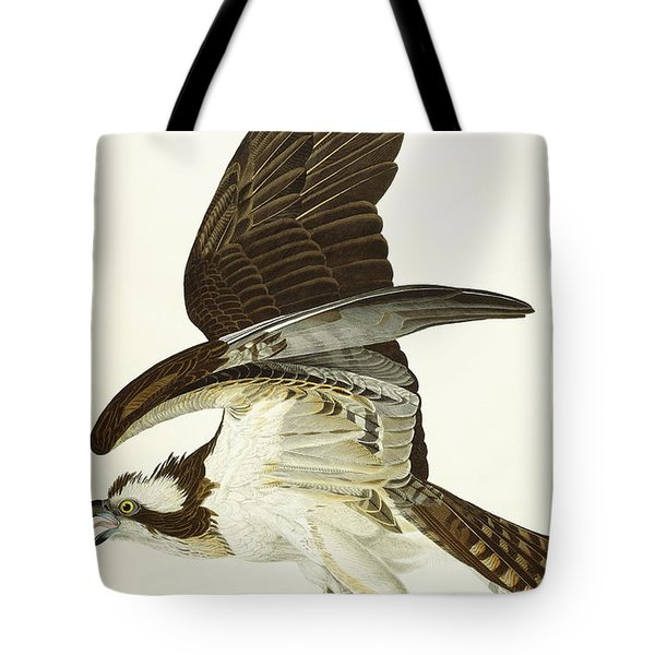 Fish Hawk Tote Bag by John James Audubon